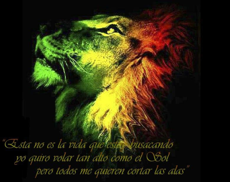 Rasta Lion Till Zion Come