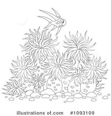 Anemone Anemone Ocean Coloring Pages Sea Animals Drawings