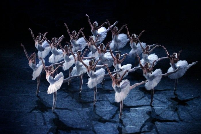 swan lake sheffield lyceum - Google Search