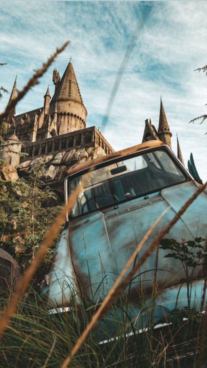 Imagines Harry Potter &Co