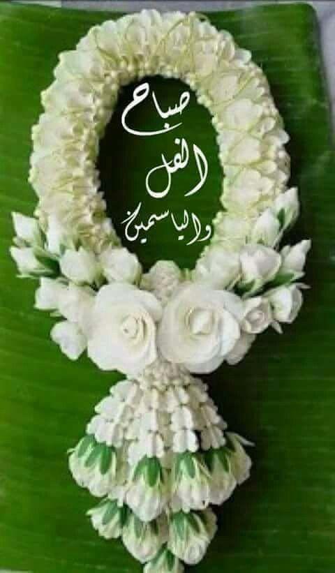 صباح النور والورد صباح أشرقت له الآمال وتبسمت له الأمنيات بثغرها الباسم لتعانق قلوبكم وتصا Floral Wreath Good Morning Arabic Wallpaper Backgrounds