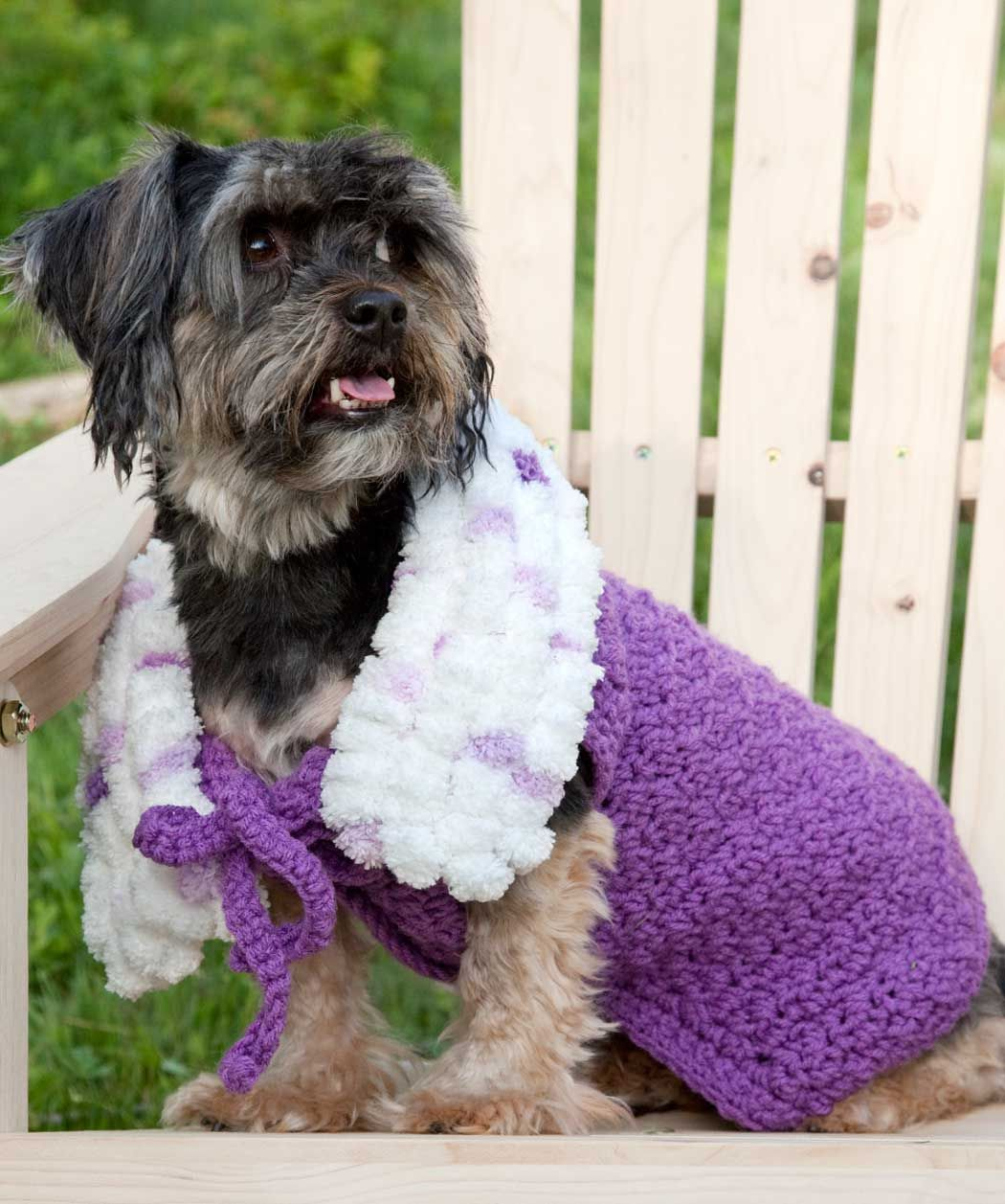 Purpleicious dog coat crochet pattern diy dog clothing miss julias vintage knit crochet patterns free patterns 30 going to the dogs in knit crochet crafts purpleicious dog sweater craft your home bankloansurffo Gallery