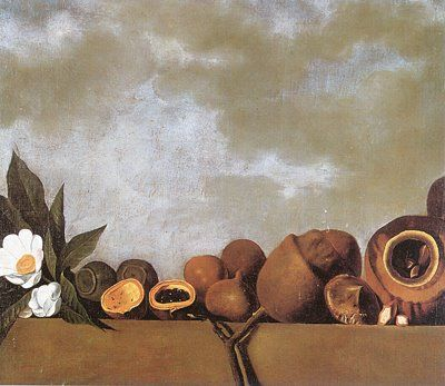 Albert Eckhout Naturezas Mortas Amerique Du Sud Peintre Feuille