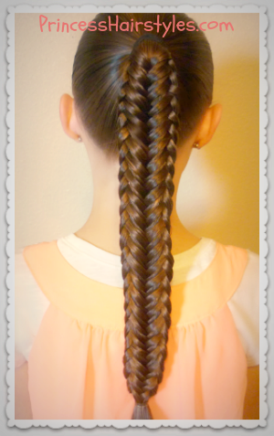 Twisted Edge Fishtail Braid Hair Tutorial   Princess Hairstyles     Braiding tutorial  Twisted Edge Fishtail