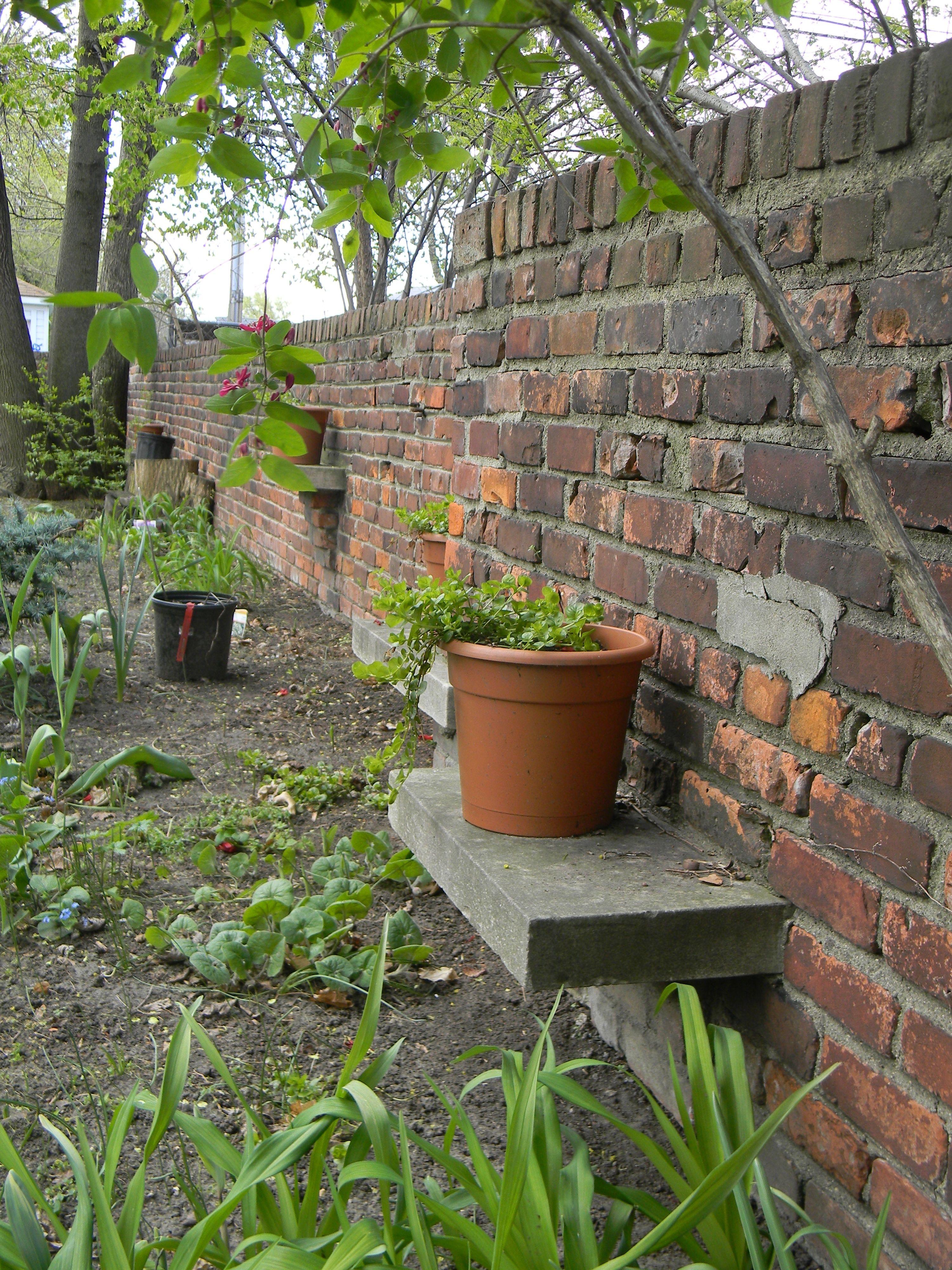 shelves built into backyard garden wall louis redstone house