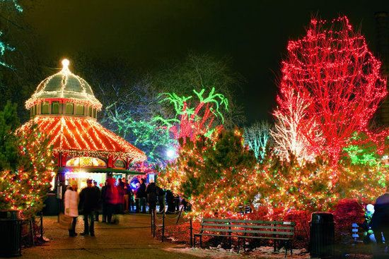 Lincoln Park Zoo during Christmas Chicago Christmas, Chicago Holidays,  Christmas At The Zoo, - Pin By Mary Weiss On CHICAGO IS...... Pinterest Chicago
