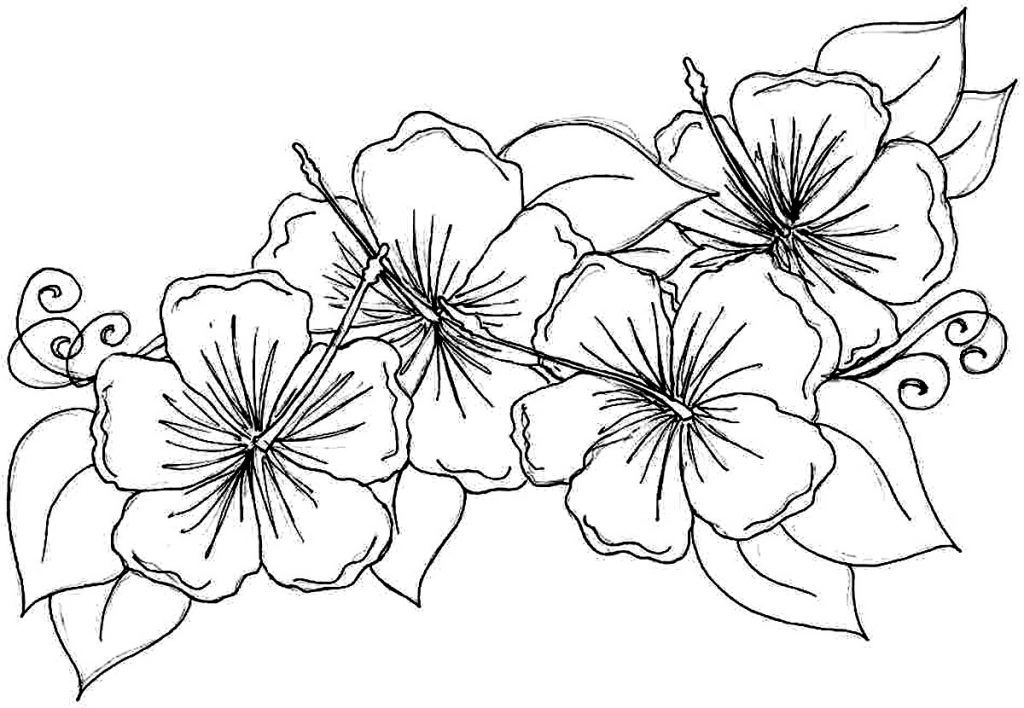 Pretty Hibiscus Coloring Page … | Coloring pages | Pinterest ...