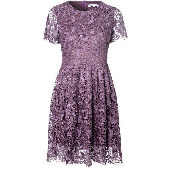 True Decadence Lace Skater Dress ($115) ❤ liked on Polyvore featuring dresses, purple, women, skater dress, purple skater dress, sheer dress, purple lace dress и lace dress