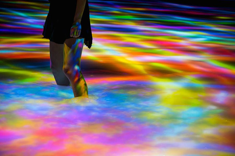 Immersive Digital Art Installation in Tokyo by Teamlab