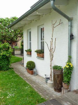 Meine Grüne Wiese Birke In Beton Garten Garten Deko 640 x 480