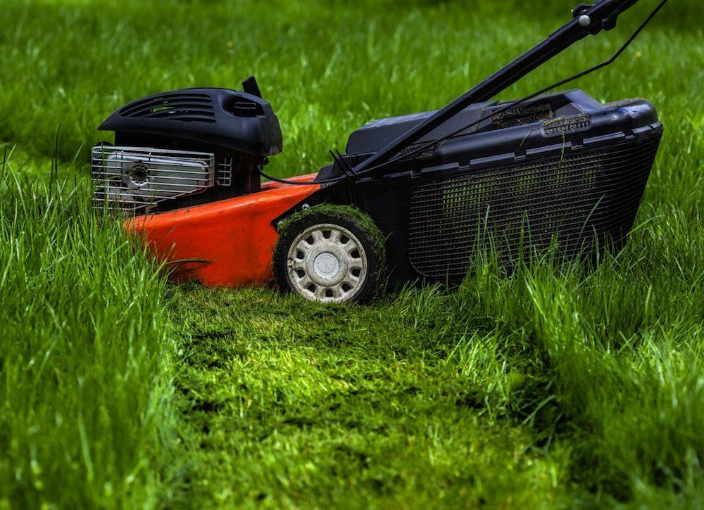 Mowing Wet Grass Here Are The Top 20 Tips To Know Lawn Mower
