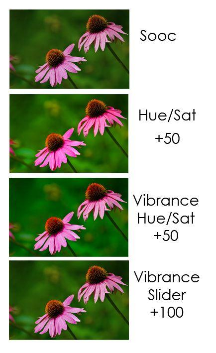 Saturation vs vibrance