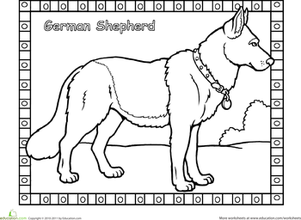 German Shepherd Coloring Page  Coloring The ojays and Words