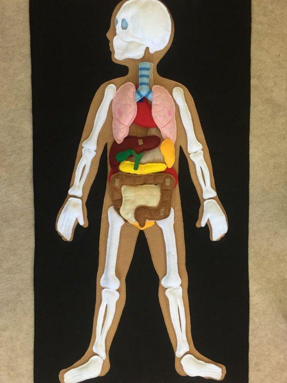 Felt human body, human organs and skeleton, my body felt mat, felt ...