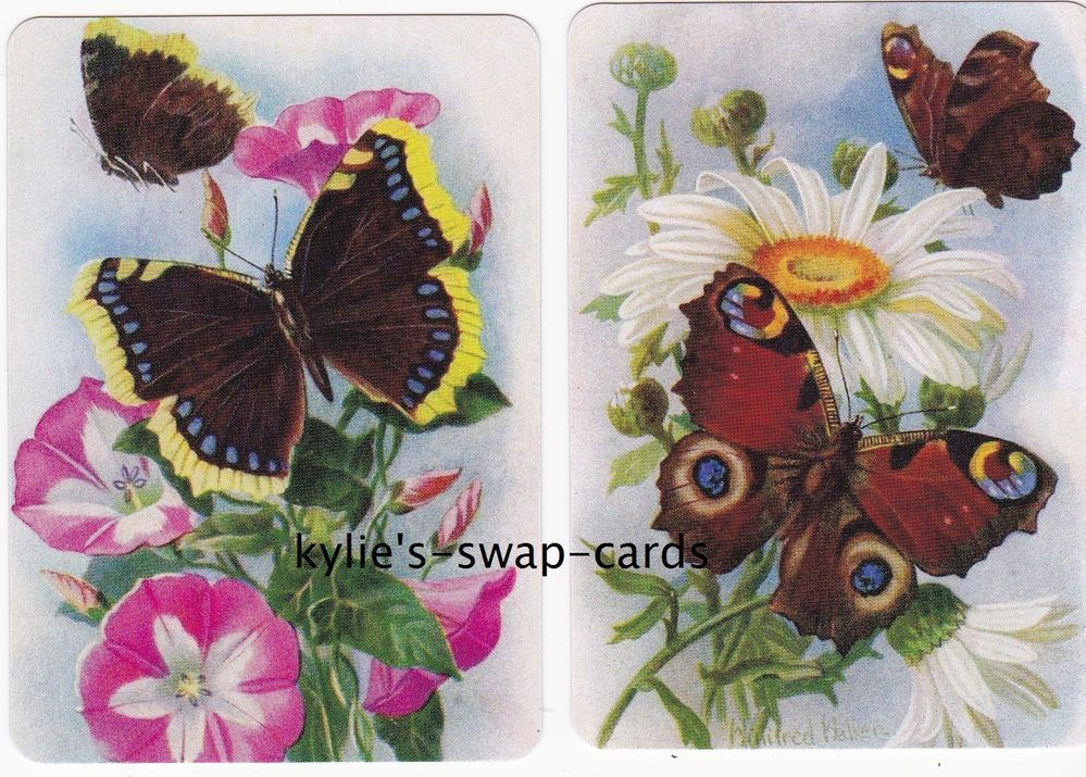 040 BUTTERFLY swap playing cards MINT CONDITION Butterflies on Flowers #2