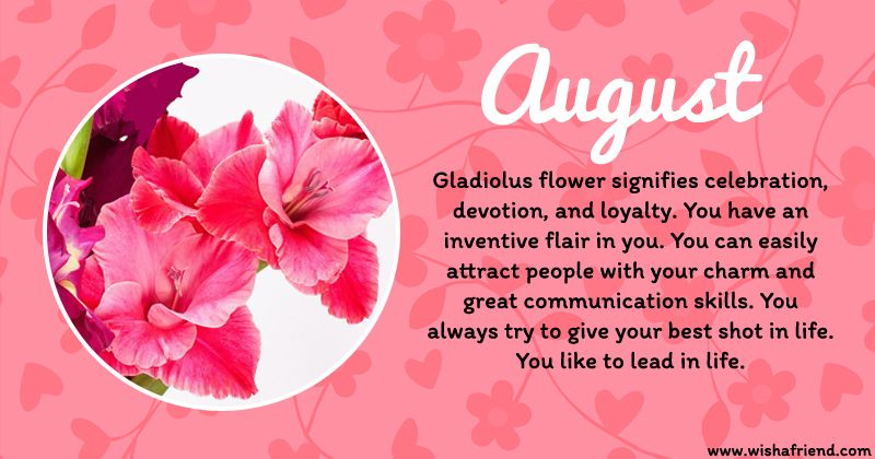 The Flower For August Is The Gladiolus Birth Flowers Birth Month Flowers August Birth Flower