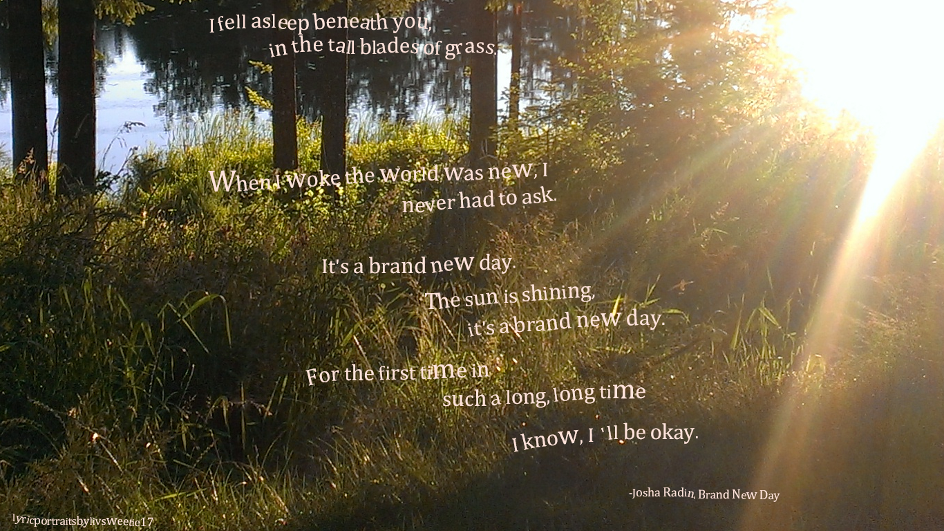 Brand New Day Quotes: Joshua Radin, Brand New Day. I Fell Asleep Beneath You, In