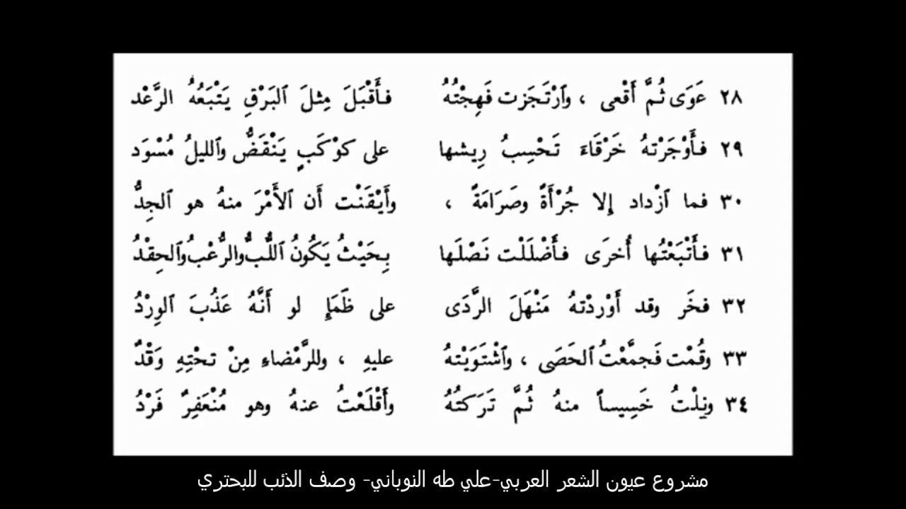 رائعة البحتري في وصف الذئب مكتوبة مسموعة كاملة إلقاء علي طه النوباني Math Math Equations Arabe