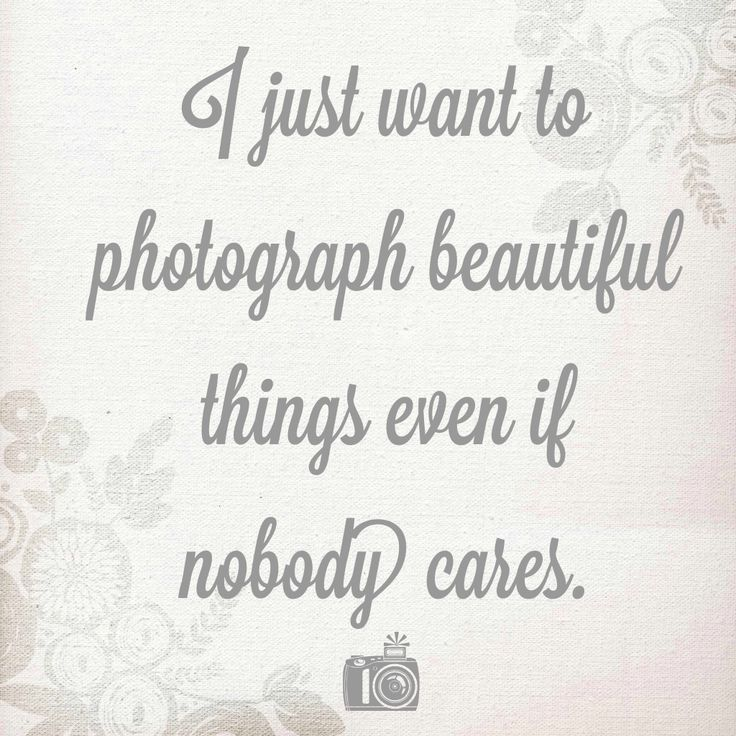 Image Result For Photography Quotes  Photography Quotes