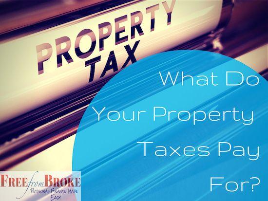 52c9979166f632d83e473c7c97d7ba7d - How To Get A Copy Of Your Property Taxes