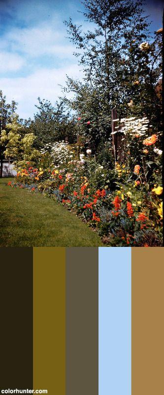Flower+Beds+Color+Scheme