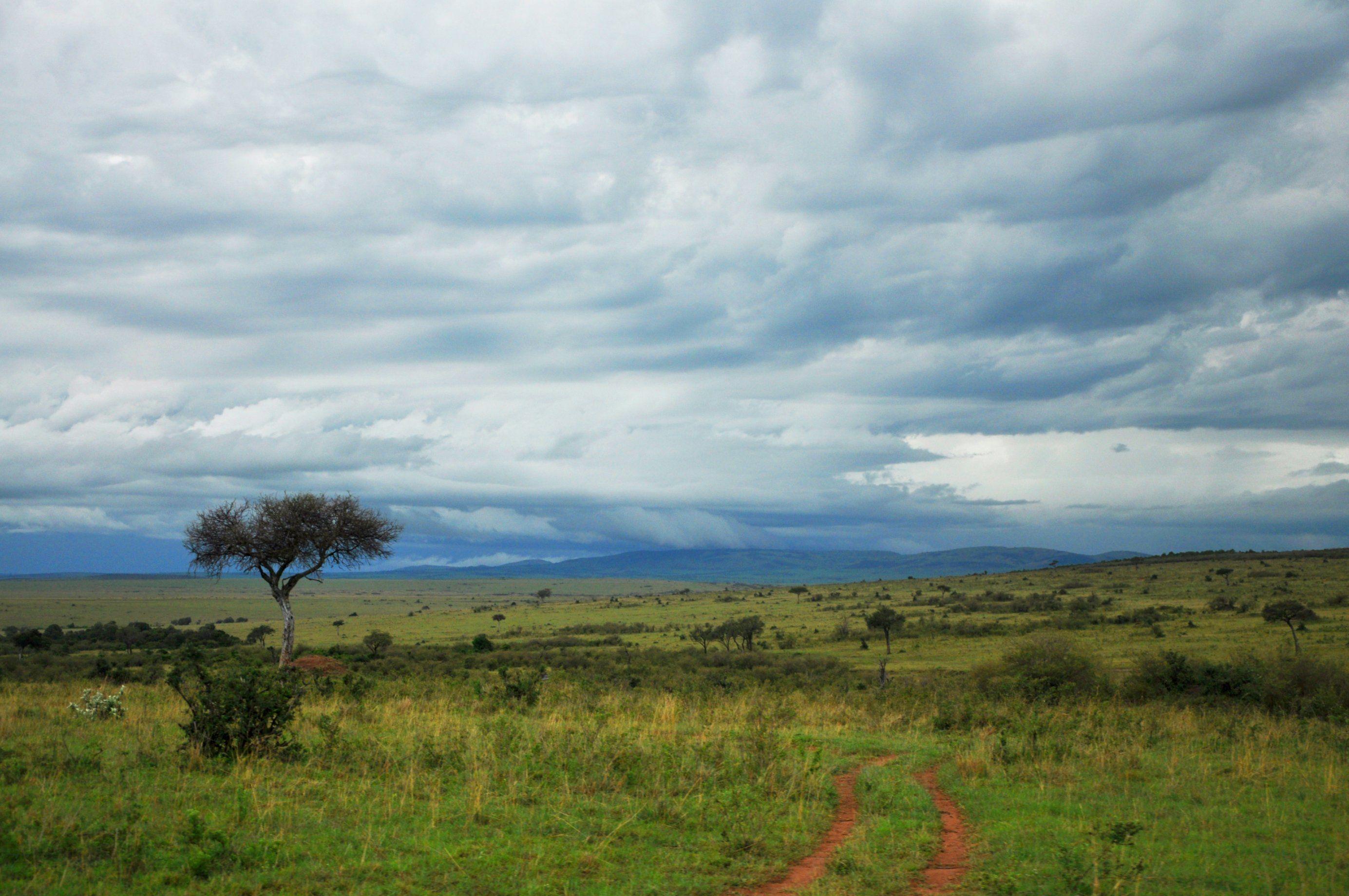 Becca in Kenya: The Saikeri Series - Becca describes her first day back!