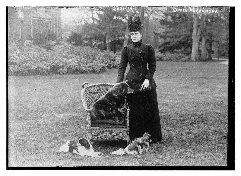 Queen Alexandra And Plumpie Queen Alexandra Hm The Queen