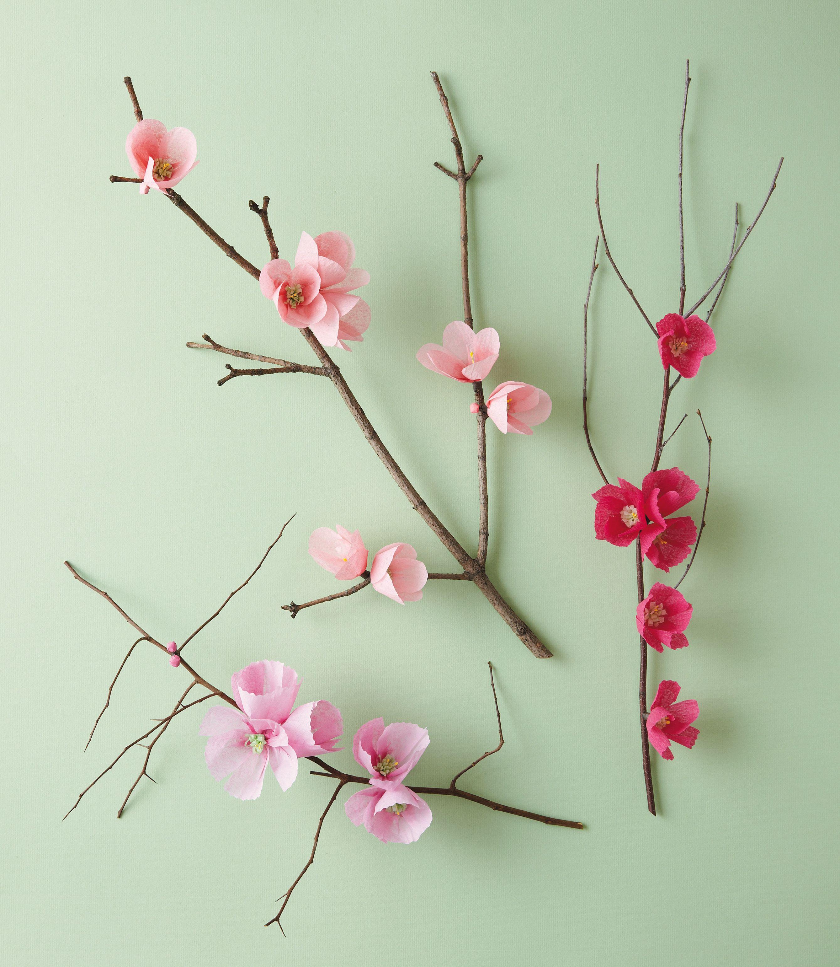 Exquisite Book Of Paper Flowers Exquisite Book Of Paper Flowers
