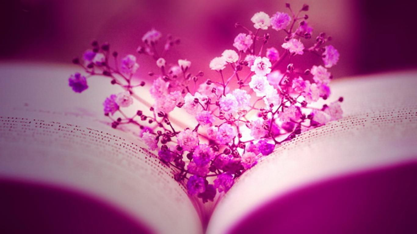 flowers facebook cover timelines hd graceful pink flowers facebook cover timelines hd graceful pink flower love facebook
