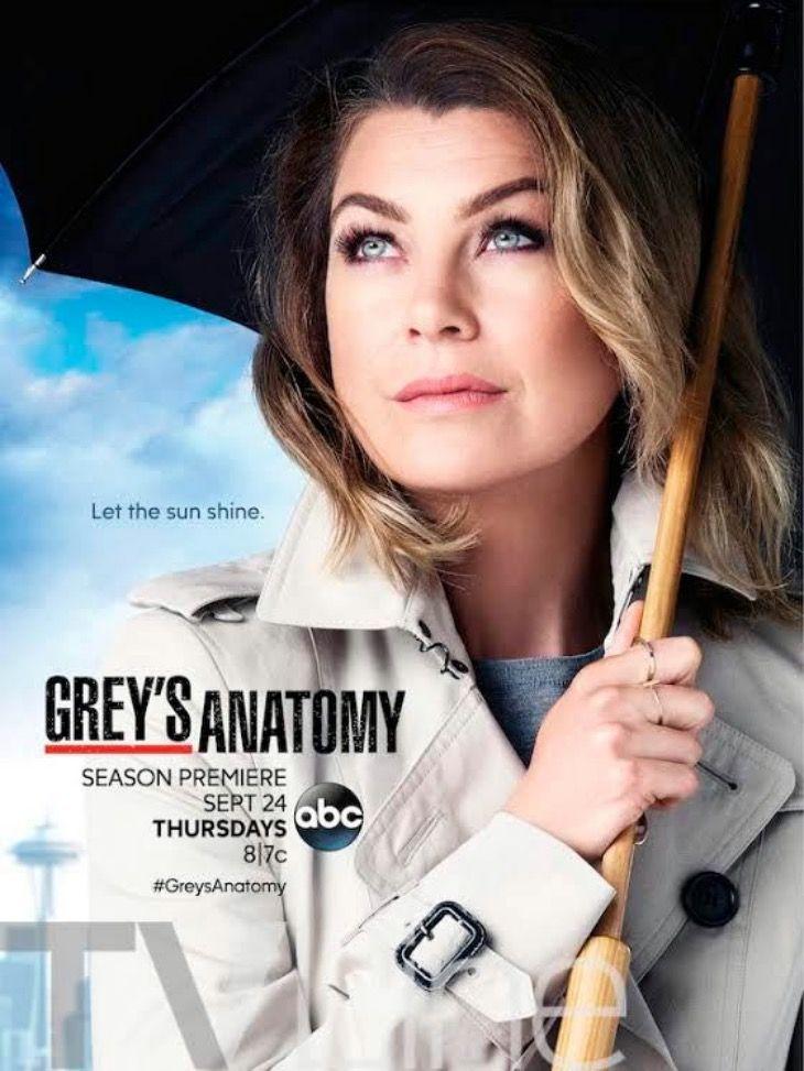 Póster Y Teaser Tráiler De La Nueva Temporada De Anatomía De Grey Anatomía De Grey Greys Anatomy Frases Series Originales De Netflix