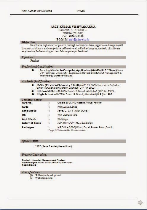 free format for resume Sample Template Example ofExcellent CV - j2ee fresher resume