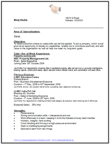 I have more than 5 years of Experience Resume (Page 1)