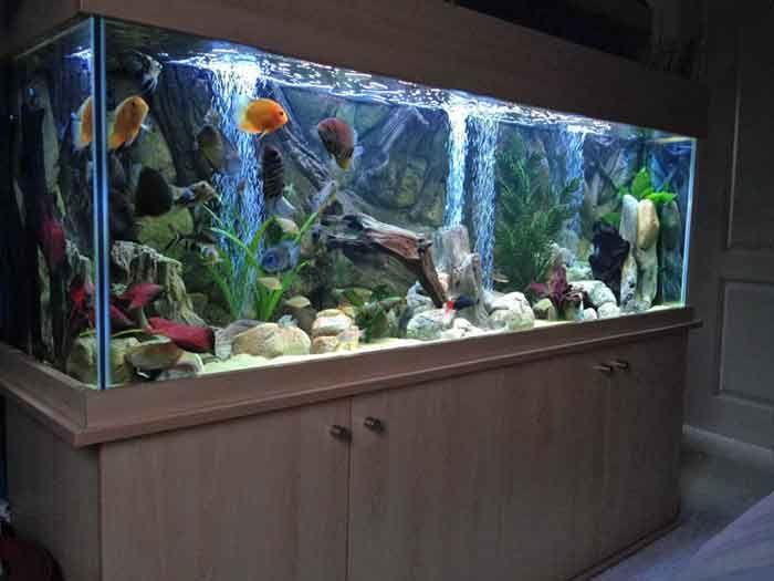 Tutorial how to install aquarium fish tank aquarium for Aquarium decoration for sale