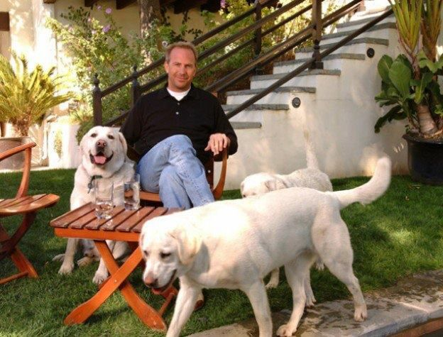 Kevin Kostner Is Pet Flys Dog Lover Of The Day For His Unique Dedication To Saving Their Lives Teaming Up With Jan Folk S O Celebrity Dogs Kevin Costner Pets