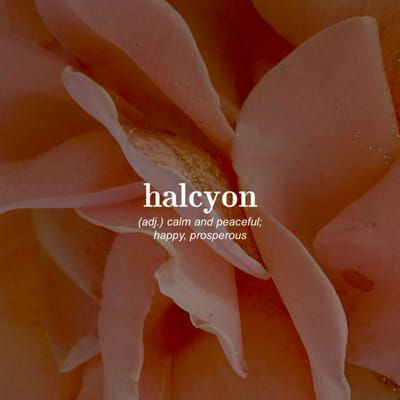 What's Your Word Aesthetic? | Halcyon