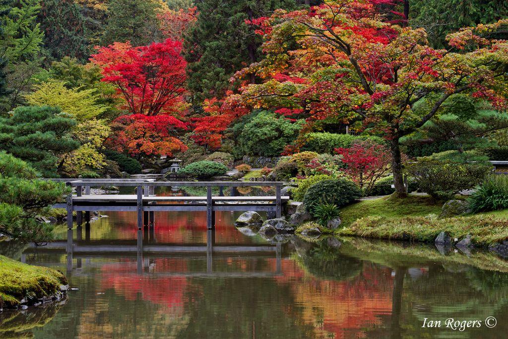 Kubota Garden, Seattle Seattle japanese garden, Japanese