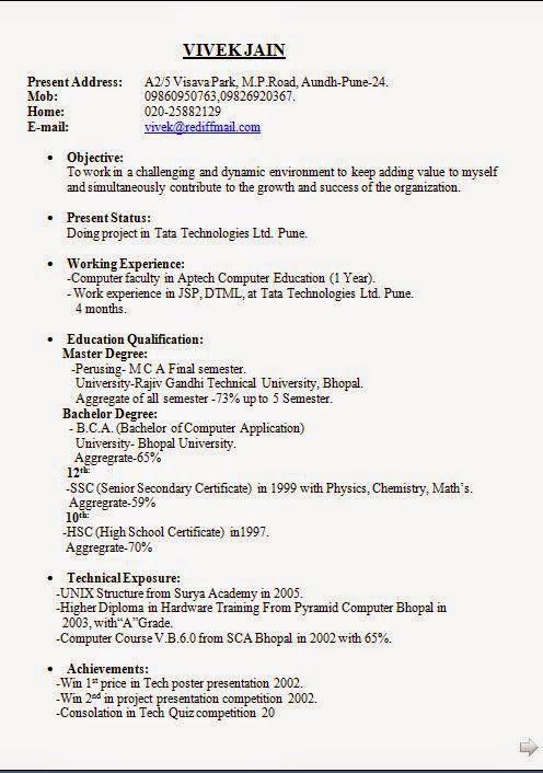 Het Curriculum Vitae Excellent Curriculum Vitae Resume Cv Format