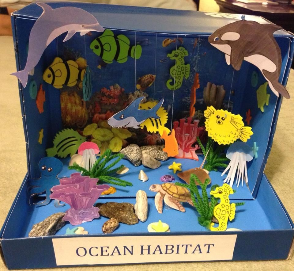 animal habitat projects Try a printable science activity that focuses on jungle, forest, grassland, and island.
