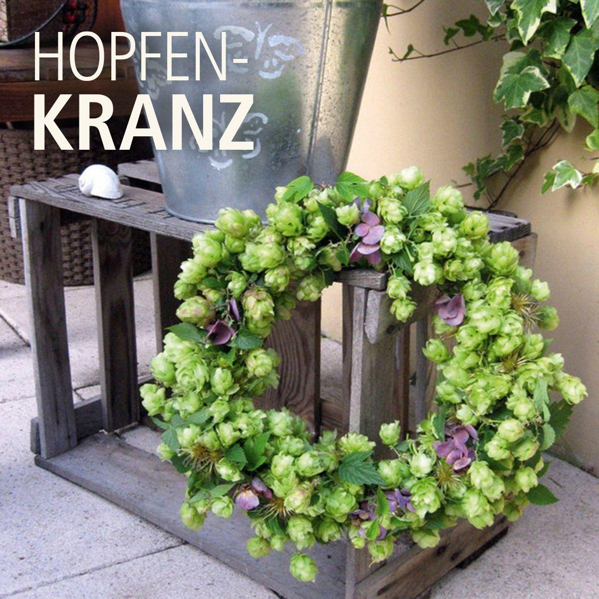 DIY: Hopfen-Kranz