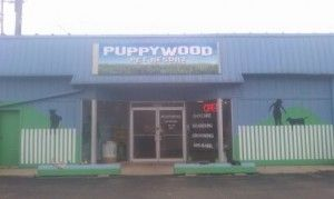 Puppywood |Dog & Cat Boarding Resort Cincinnates, Ohio
