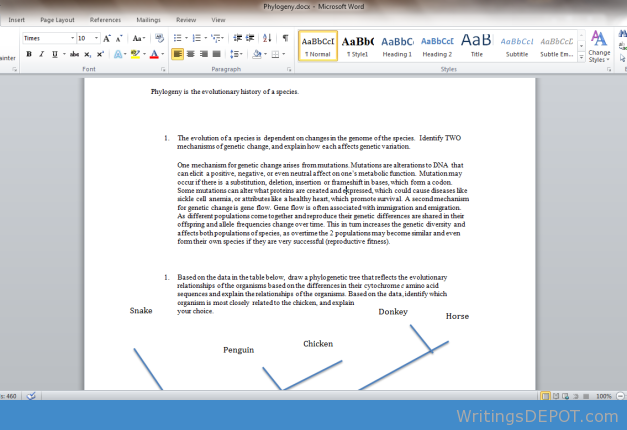 Business Essay Structure Download Httpwritingsdepotcomdownloadsphylogeny Ap Biology  Evolution  Essays Phylogeny Is The Evolutionary History Of A Species The Evolution Of  A  Essays About Science also Proposal Example Essay Download Httpwritingsdepotcomdownloadsphylogeny Ap Biology  Classification Essay Thesis Statement