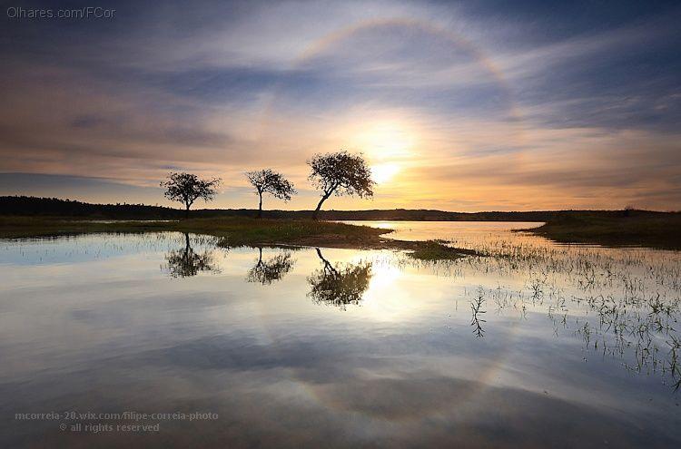 Olhares.com Fotografia | �FCor / Filipe Correia | Dia da Terra - 22 Abril
