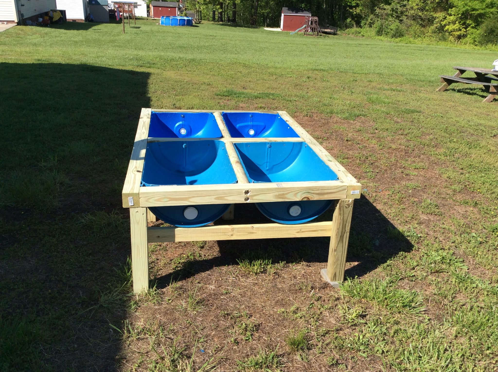 Raised Garden Made From Plastic Blue Barrels And Easy On Your Back