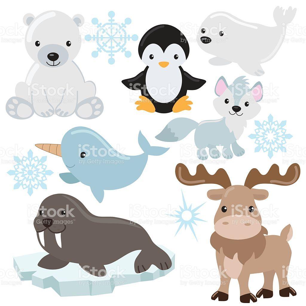 Arctic Animals Arctic Animals Antarctic Animals Arctic Animals Crafts