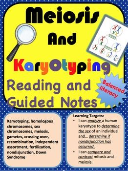 Meiosis And Karyotyping Reading And Guided Notes Guided Notes Meiosis Vocabulary Development