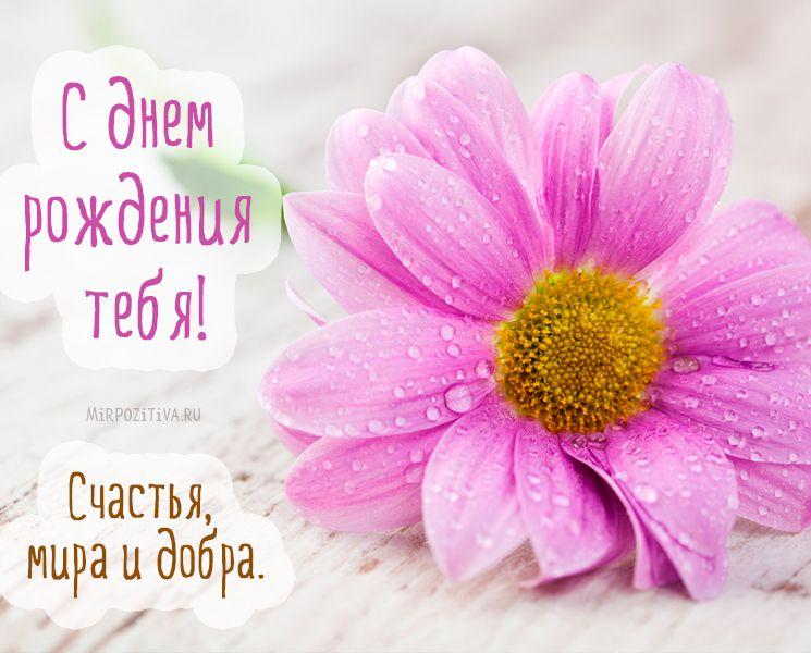С Днем рождения цветы: картинки   С днем рождения