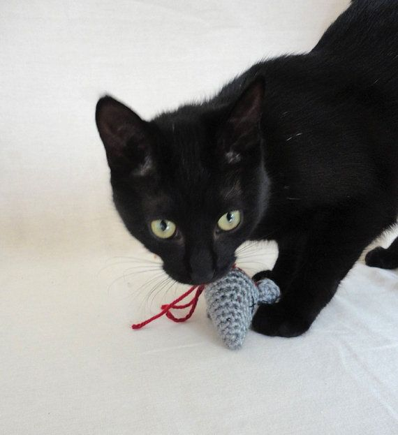 "Crochet a ""decapitated mouse head"" cat toy.  Sick, but also hilarious!"