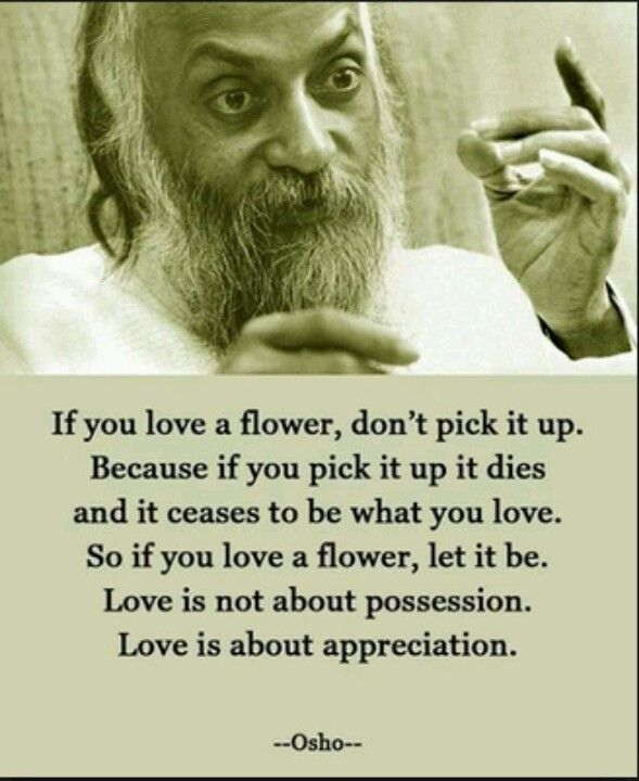 Osho Quote ... Love is about appreciation!