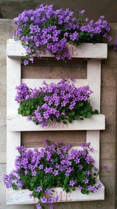 White wood pallet vertical garden