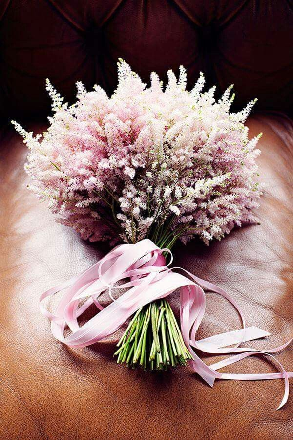 Monochromatic pale pink astilbe bouquet with matching ribbon
